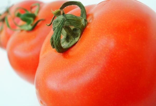 Tomatoo row